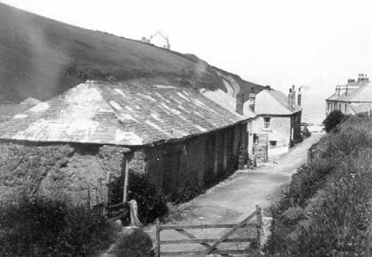 Liberty Fish Cellar: View from the lane 1906